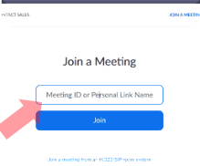Zoom Meeting Info